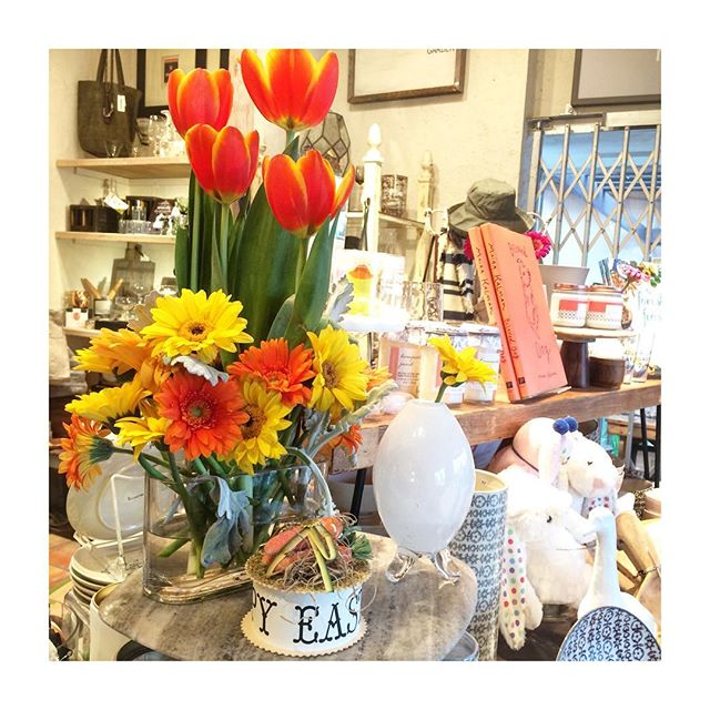 Spring has sprung in the forest 🐰🌼 #spring #easter #giftsforthehome #gifts #giftstore #springbreak #springishere #losangeles #studiocity #venturablvd