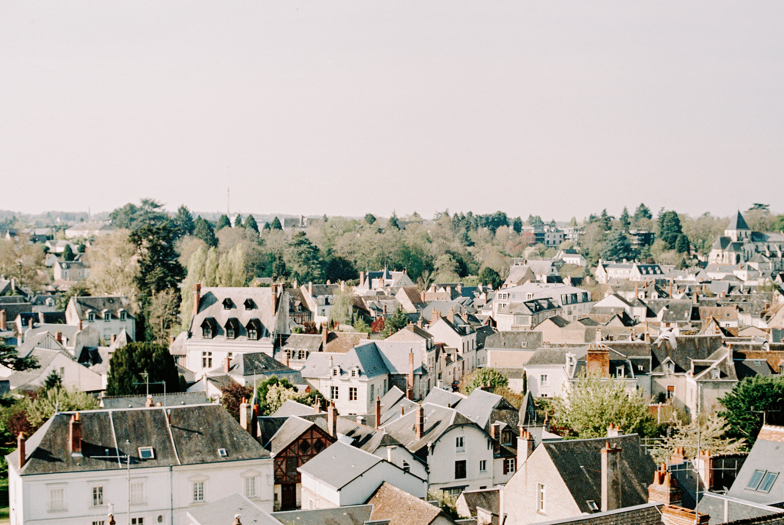 A view of Amboise on a Sunday morning from the city's chateau. Sunday mornings are bustling and the city has a weekly farmer's market that is seriously spectacular.