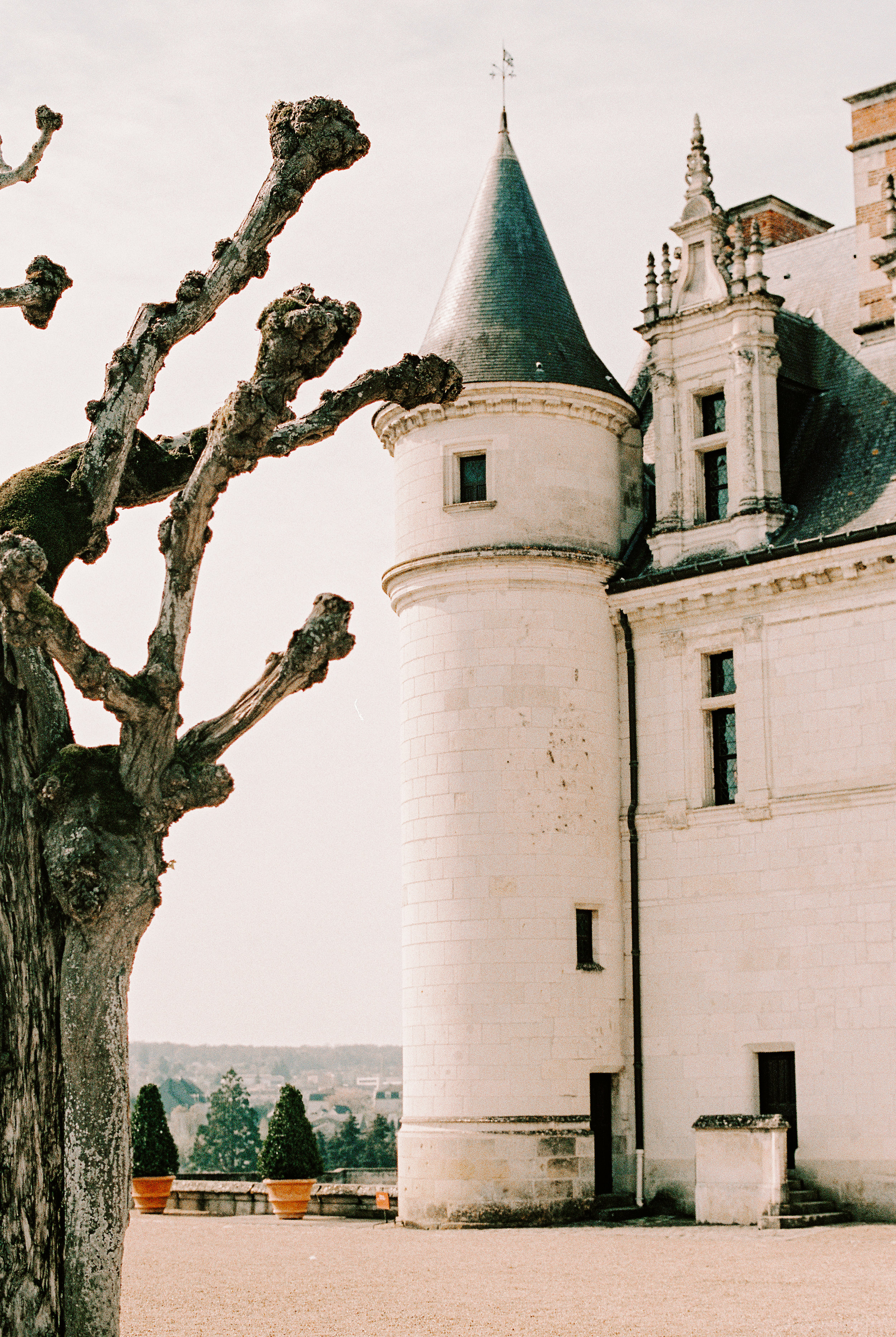 Our visit to Chateau Amboise was breathtaking.