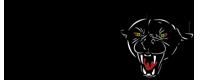 DPMS_logo.png