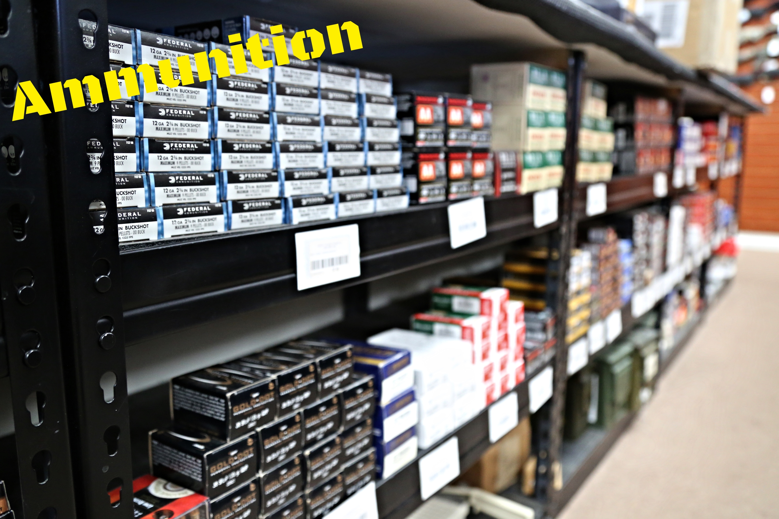 We have a very wide variety of common caliber ammunition in stock at all times, and are always receiving new shipments of hard to find calibers as well.  From .22 LR all the way up to .338 Lapua, you will find both rifle and handgun calibers here at the shop.  We typically have the following brands on hand: -Federal -Hornady -Remington -Winchester -PMC -Magtech -Sellier & Bellot -Estate -TulAmmo -Sig Sauer -Speer -FN  and many more!