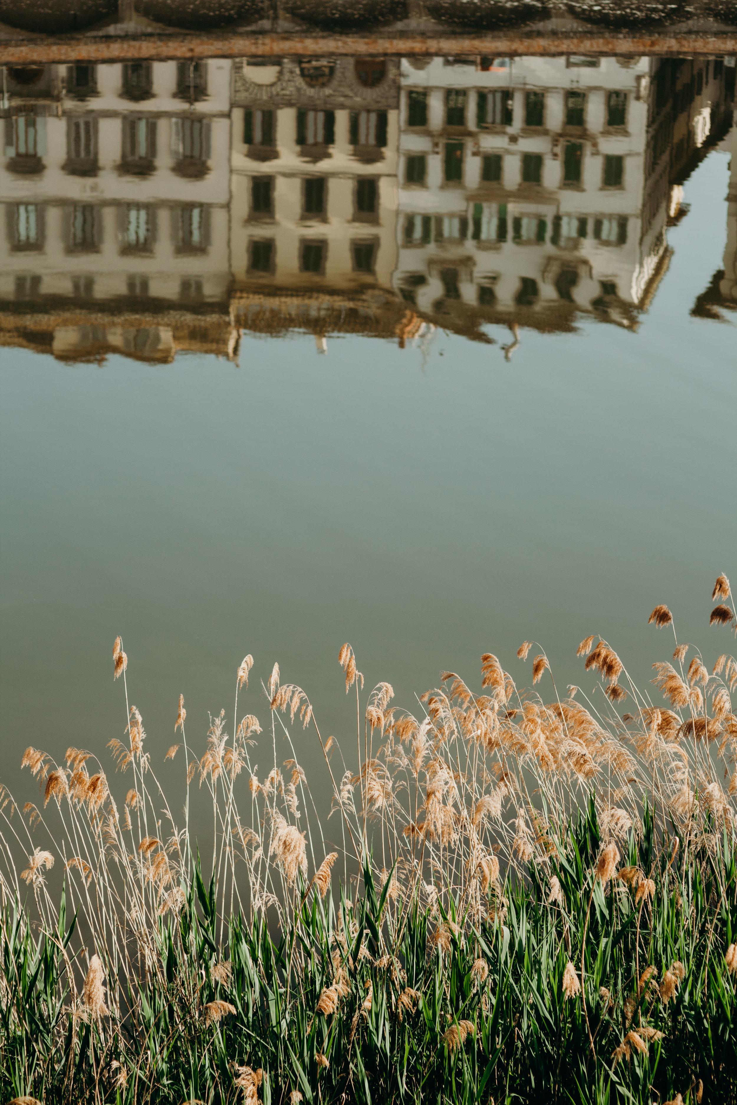 ITALIA-4528.jpg