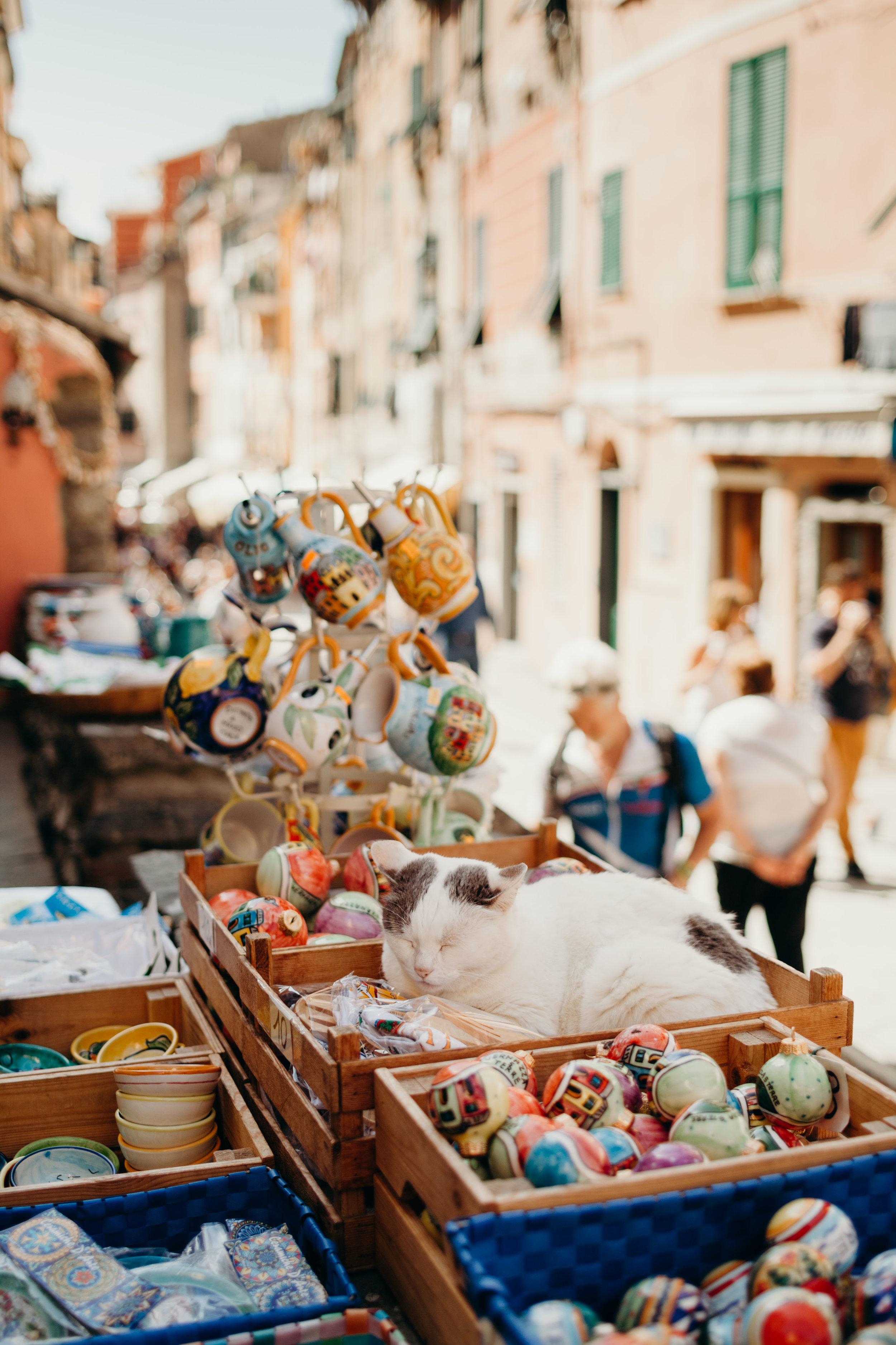 ITALIA-5923.jpg