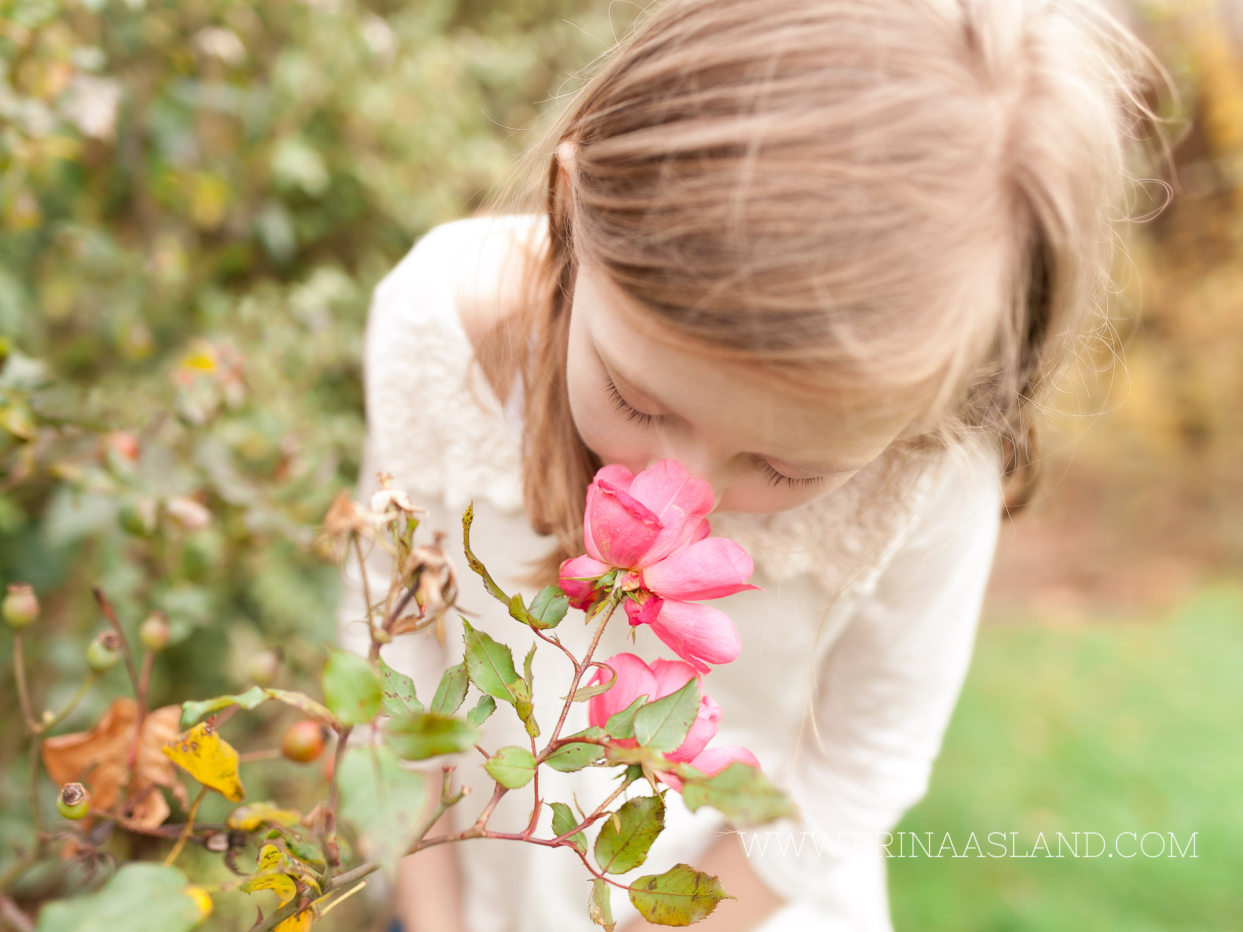 Erin Aasland Snoqualmie Childrens Photographer Beautiful Roses