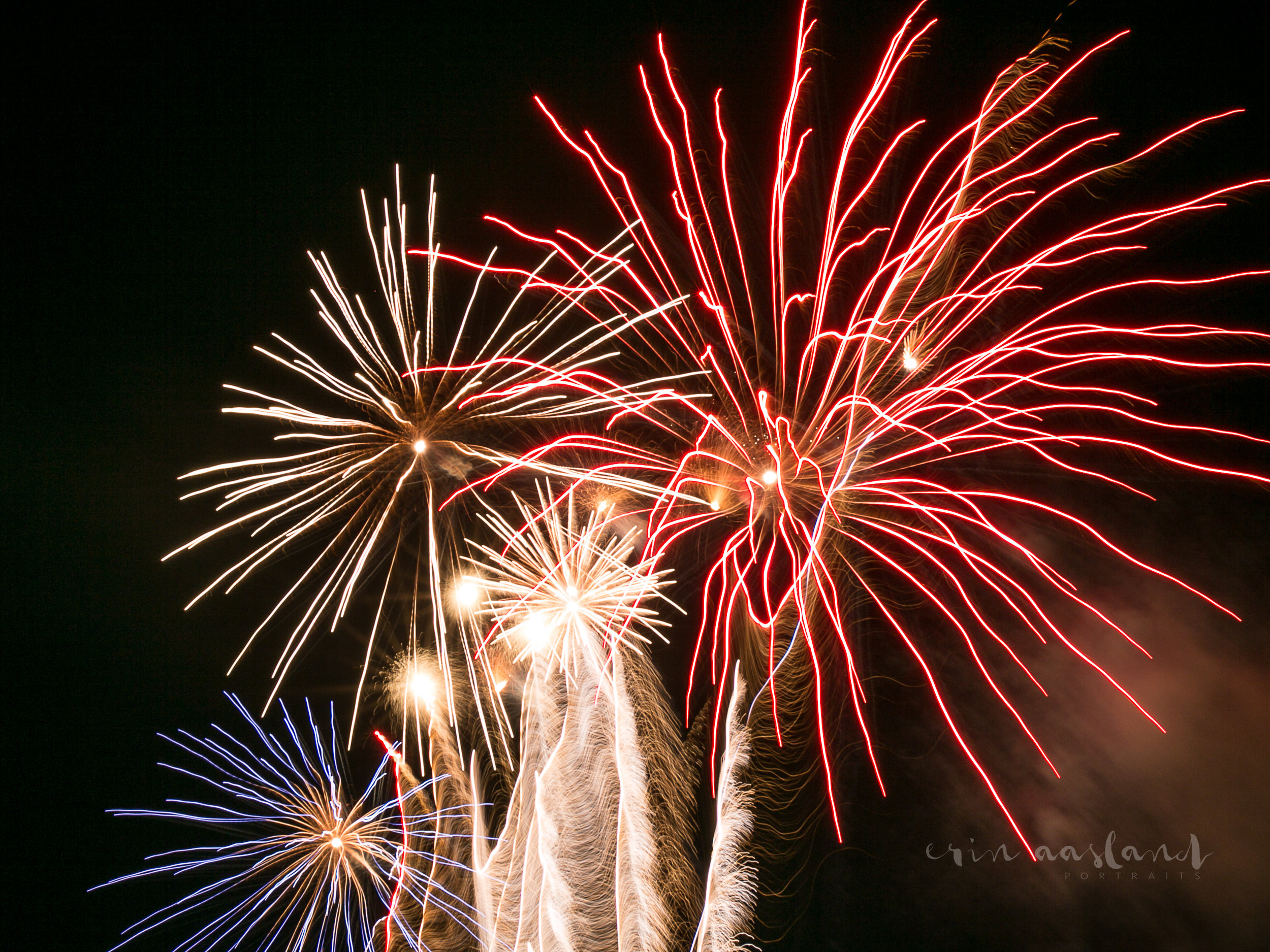 Erin Aasland Photographer 4th of July Burst Fireworks
