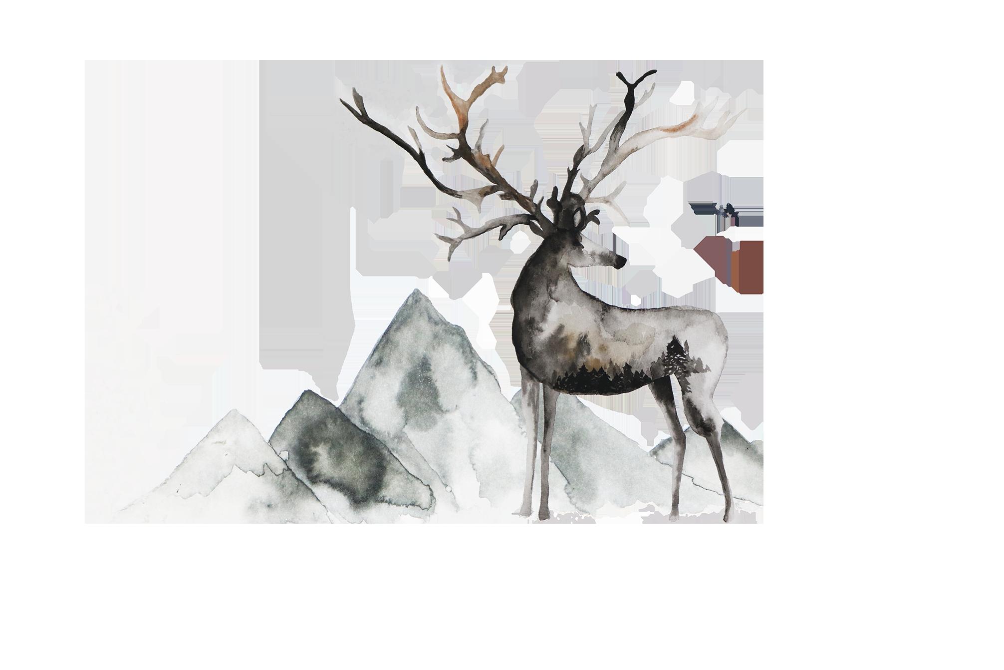 Erin Aasland Deer Logo 2019.png