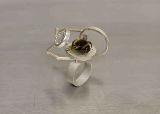 Wendy Leah Dawson - Scrutiny Ring.jpg