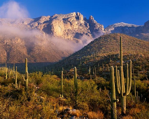 Environmental Consulting and Industrial Hygiene in Scottsdale and Phoenix Arizona, Walter Bouchard and Associates