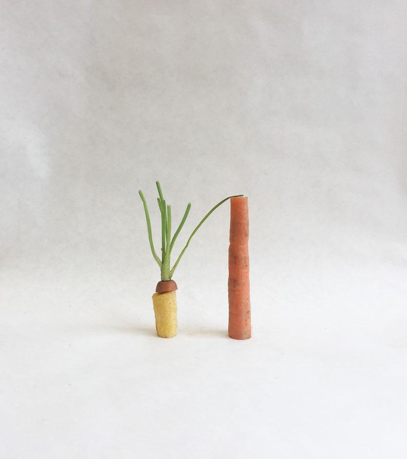 carrot3.jpg