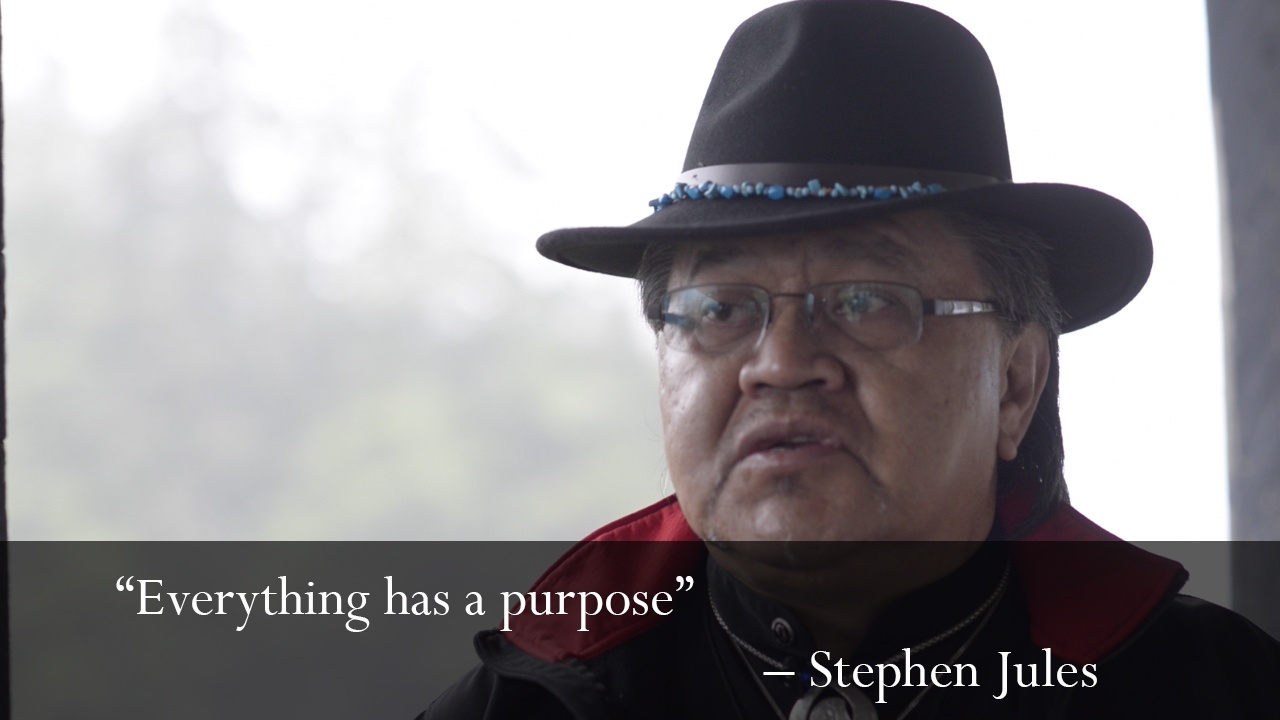 Stephen5.jpg