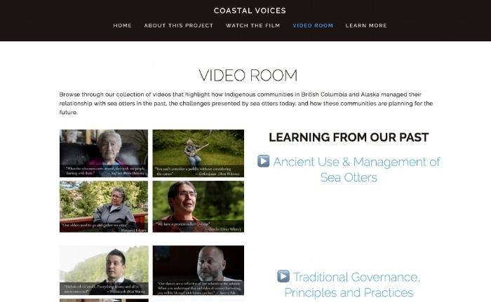 video room.jpg