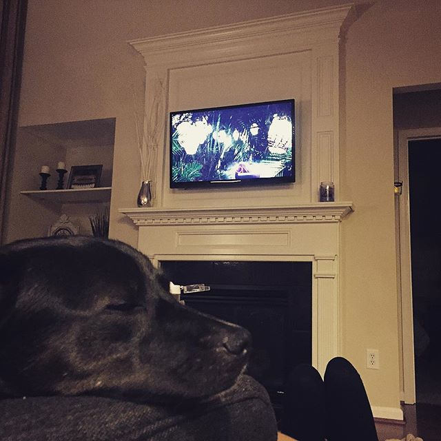 Olive was forced into watching Bachelor In Paradise again. The result speaks for itself.