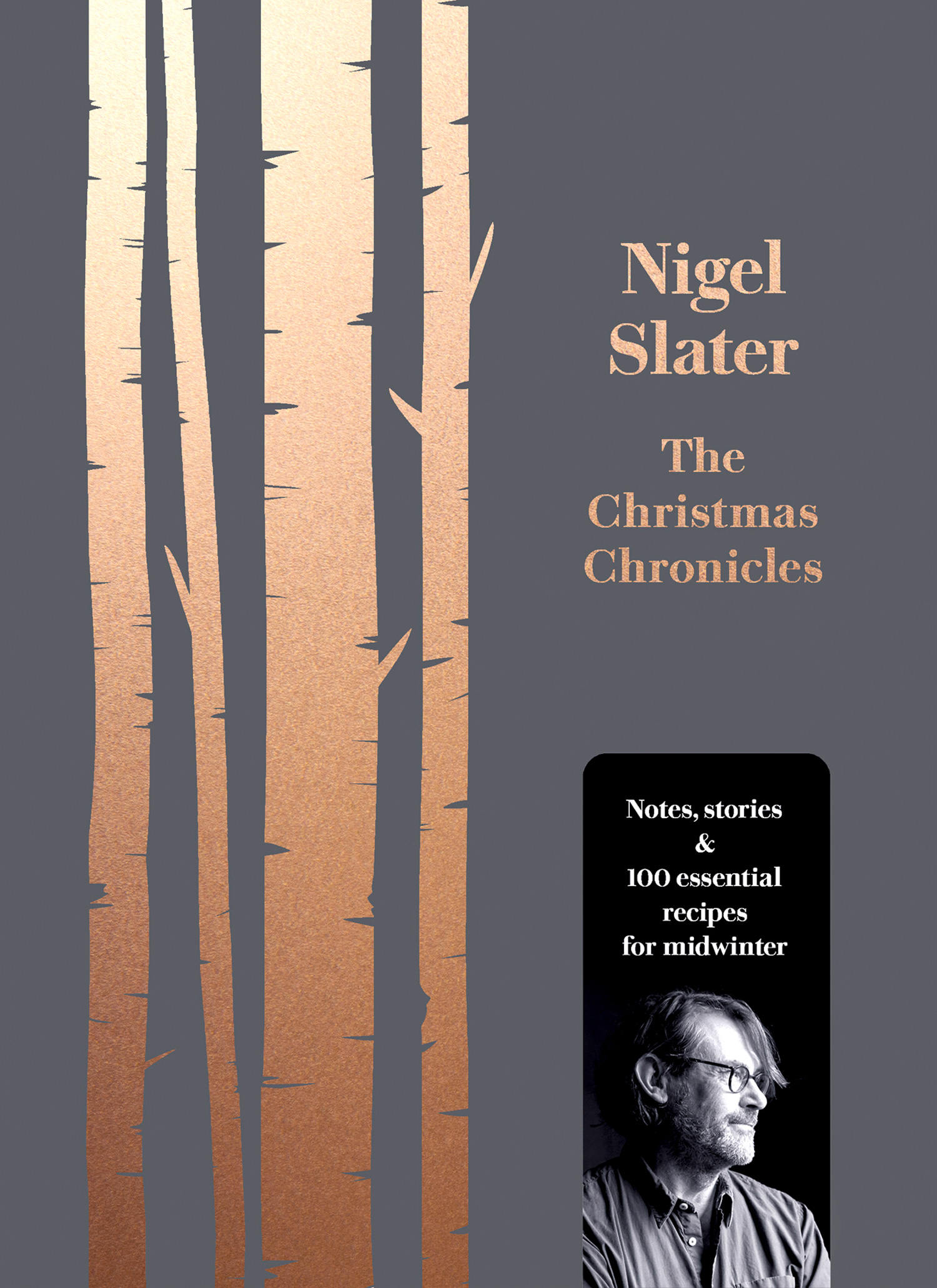 The Christmas Chronicles Cover.JPG