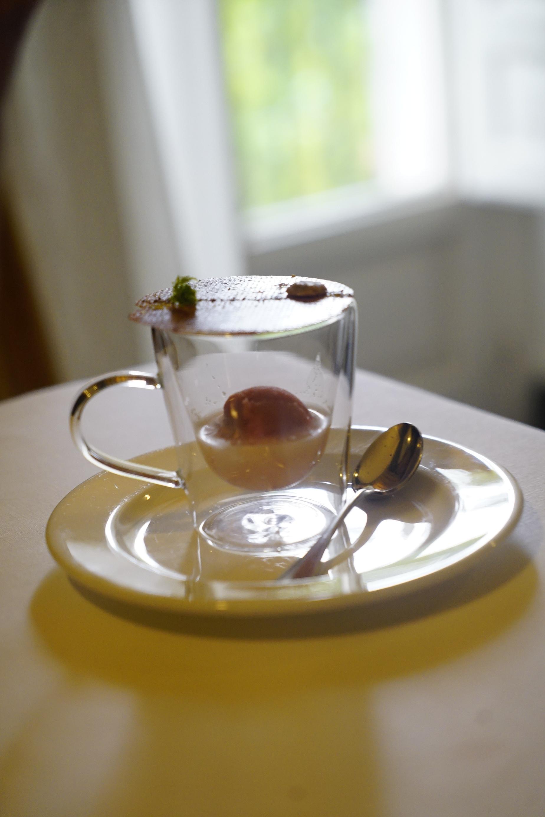 hazelnut milk, prickly pear sorbet and lemon crsip.JPG