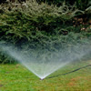sprinklers 2SQ.jpg
