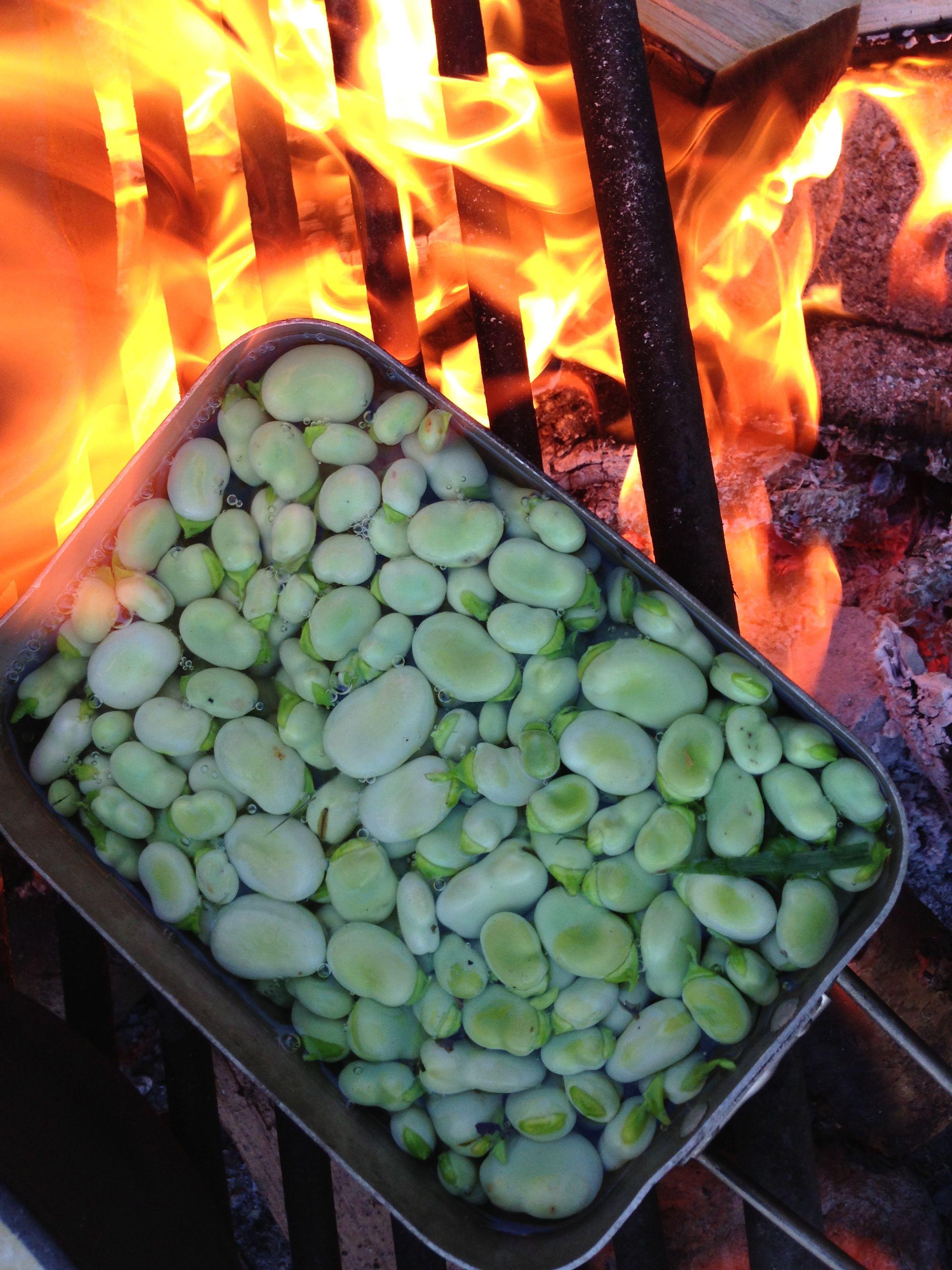 fava beans on campfire.jpg