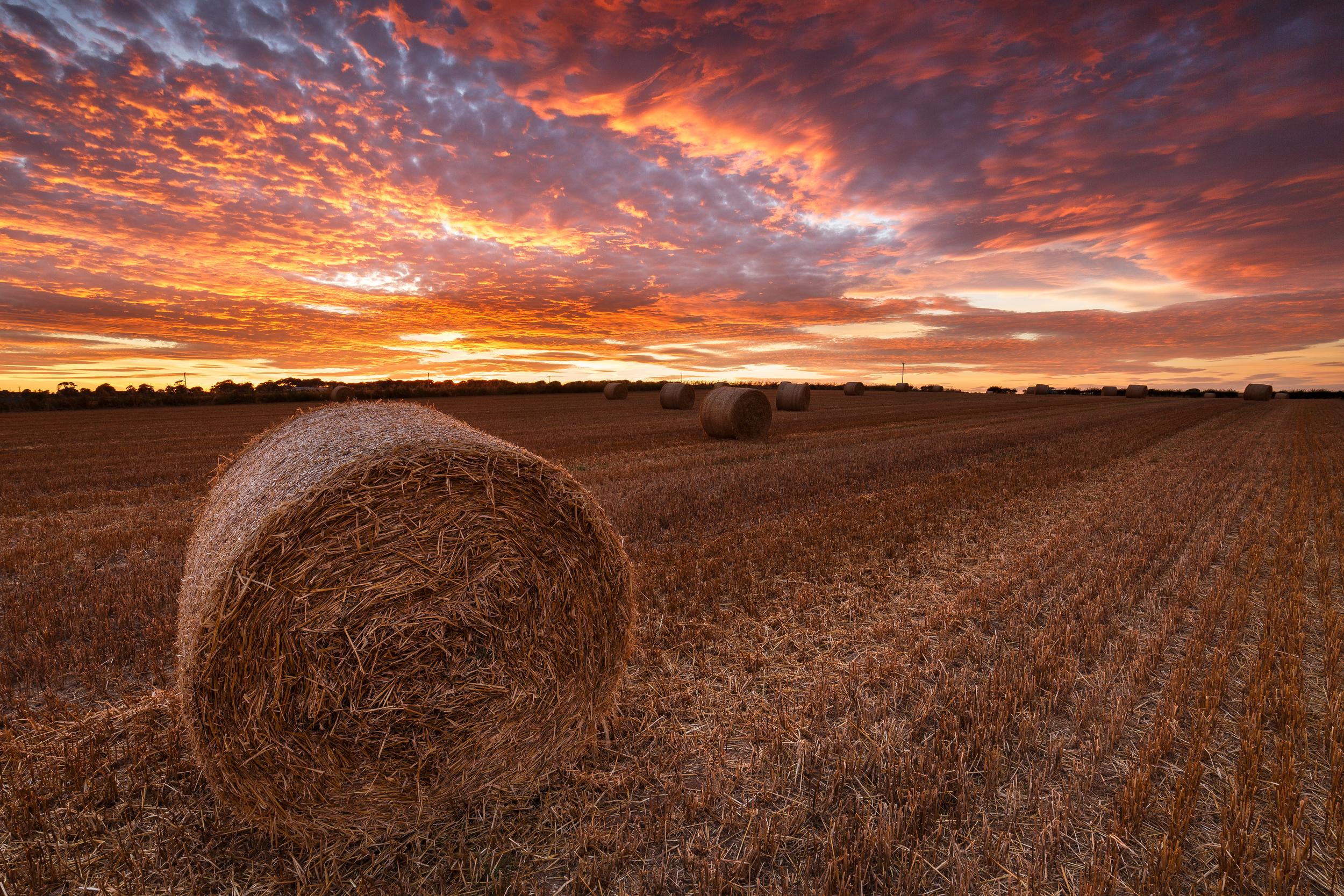 Straw Bales Sunset