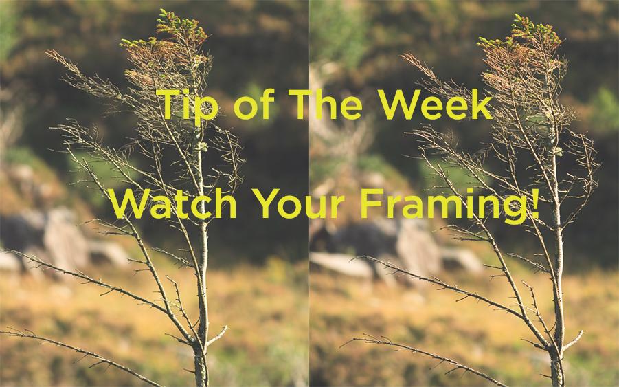 GrahamDalyPhotographyBlog_TipOfTheWeek_WatchYourFraming