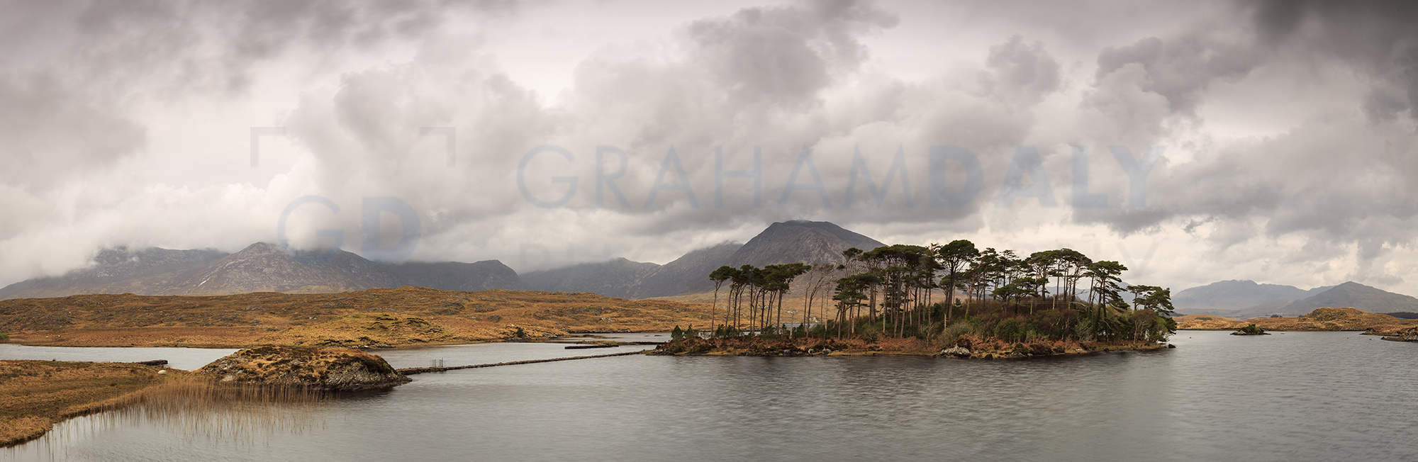 The Pine Island at Derryclare Lough