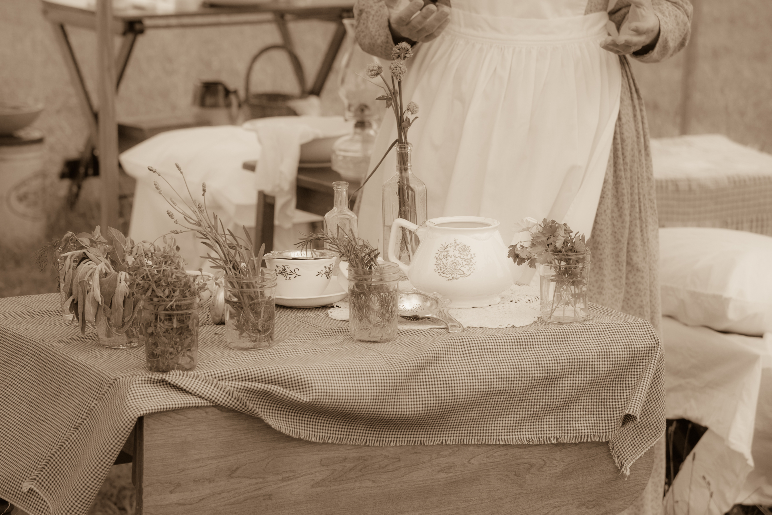 Demonstrating the medicinal uses for herbs