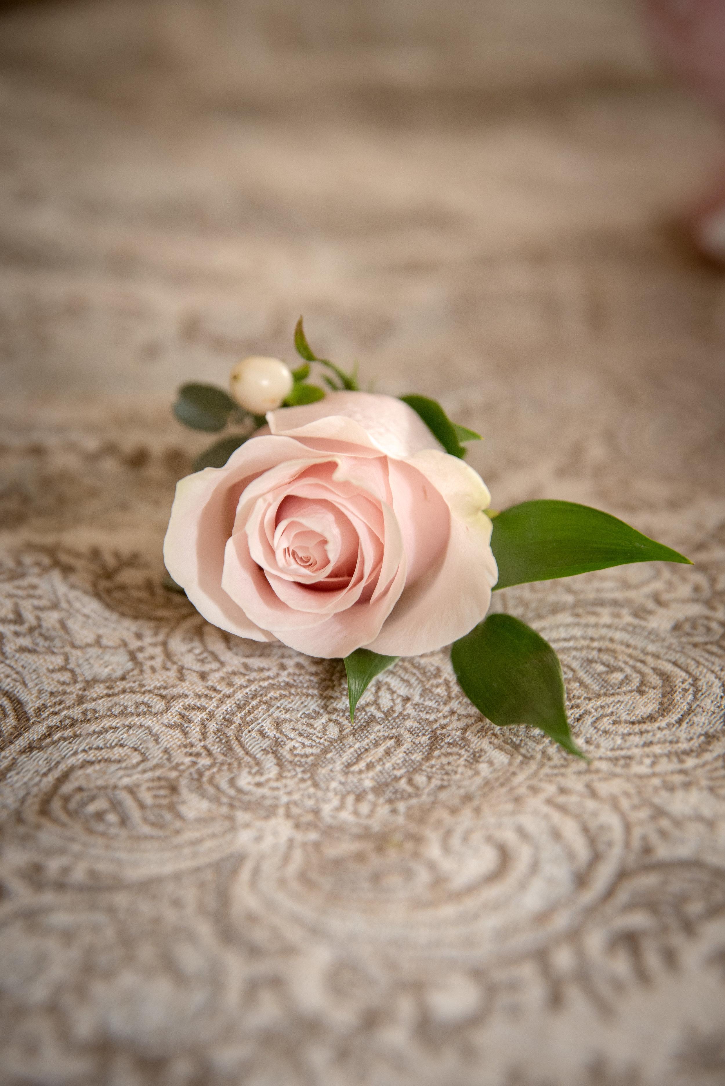 Lisa_Todd_wedding06302018-26.jpg