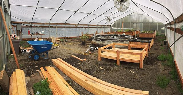 Time to clean this place up and plant the first crop. Super long winter but we're ready!!