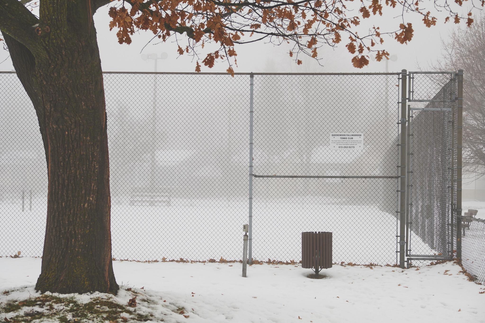 01-Foggy Ottawa-DSCF1040.jpg