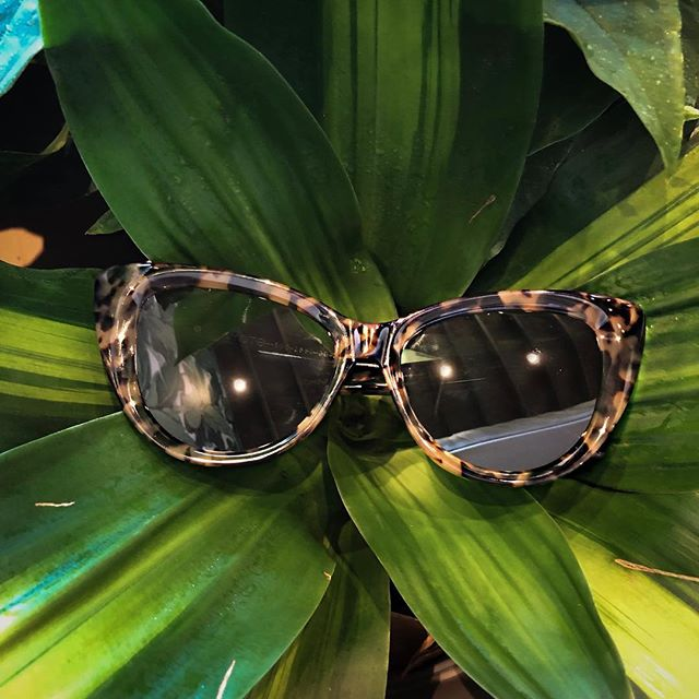 Don't forget to snatch your @shopsonix sunnies with us today! 🌞