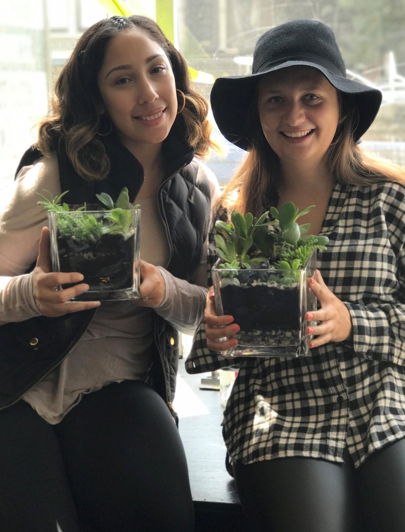 Hayley Vanessa succulents.jpg
