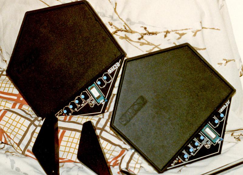 BermudaSchwartz-SimmonsSDS1_1985.jpg