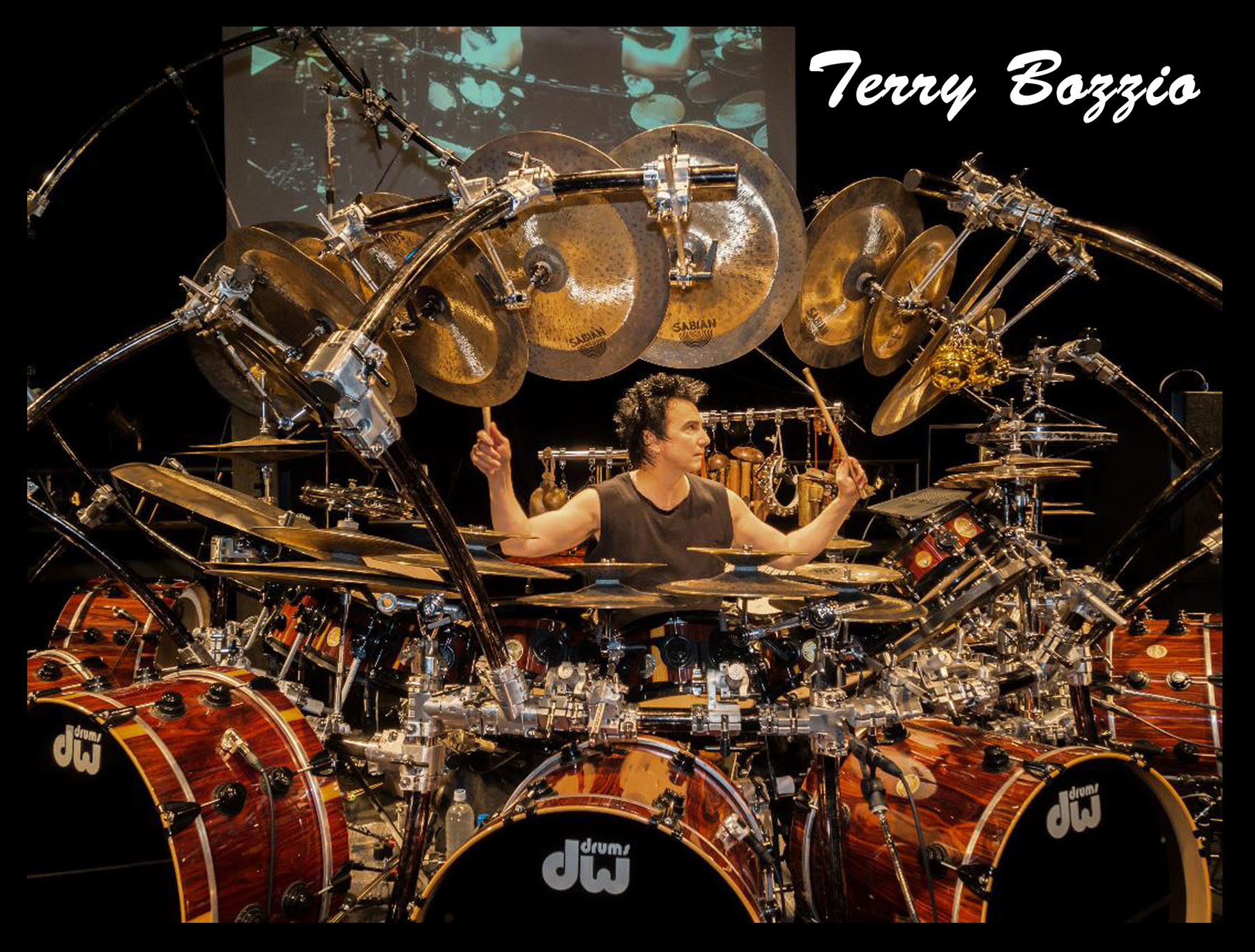 Terry-Bozzio-1.jpg