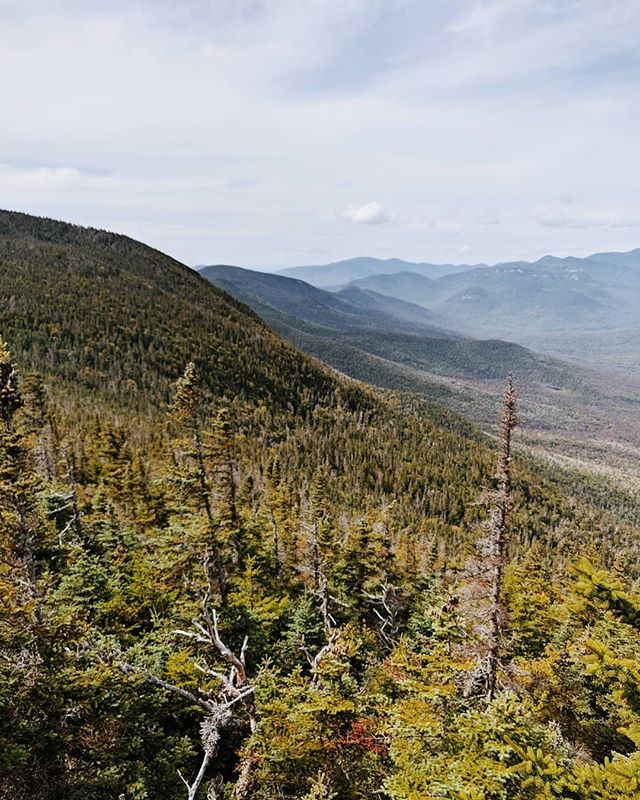 Day Two: Summited another two mountains of the 48 4000 footers in NH. Weather was perfect and the views were breathtaking as always (when it's clear). One of the better hikes of the year with some unbelievable stories made along the way. . . Updated my camera software on my phone prior to the trip. All the images in this post and the previous were captured with the OnePlus 6t. . . #whitemountains #oneplus6t #newhampshire #mountosceola #eastosceola #marines #veterans #hiking #backpacking #GO