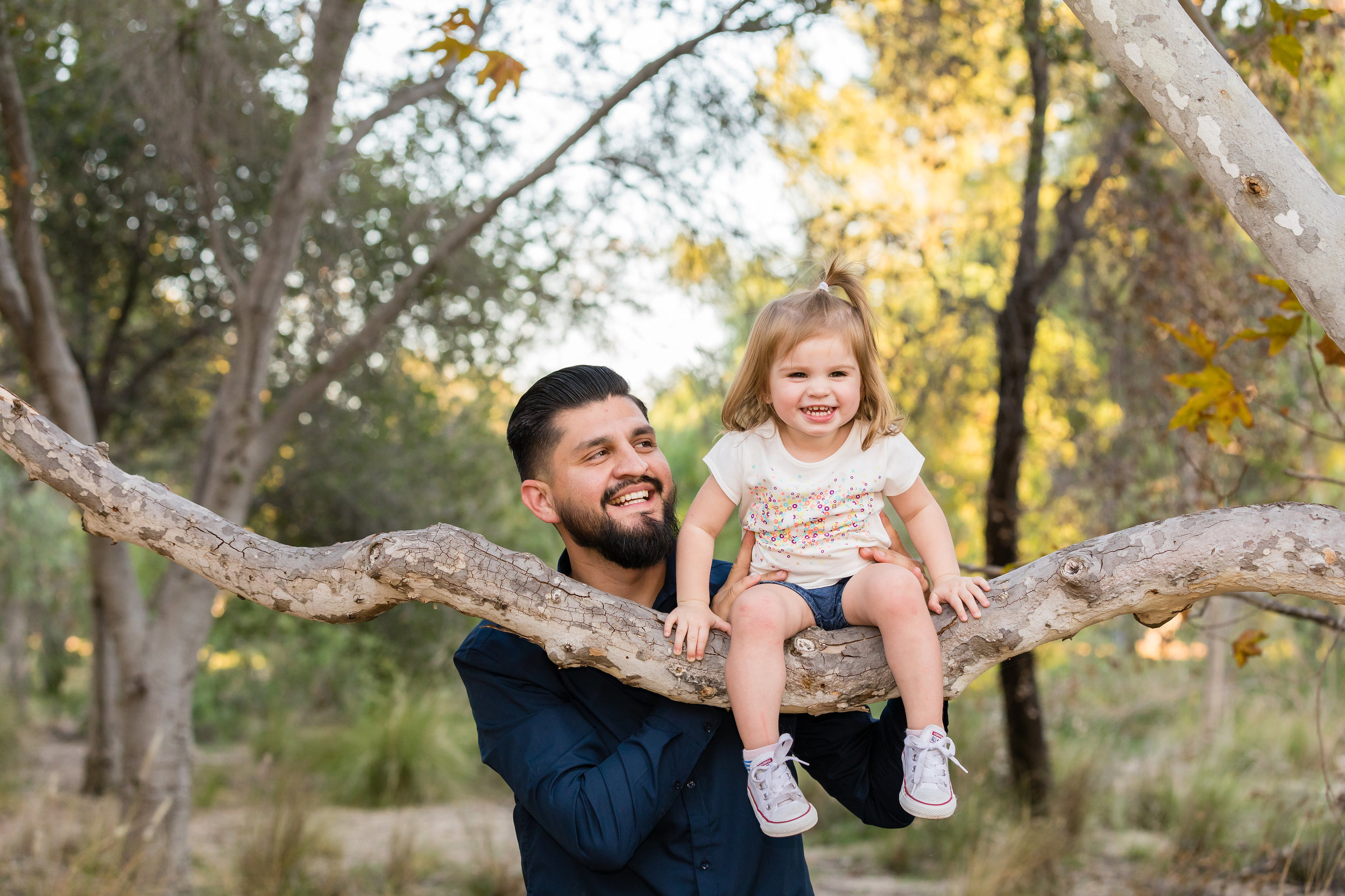 Father holds daughter as she plays in the tree at Yorba Regional Park.jpg