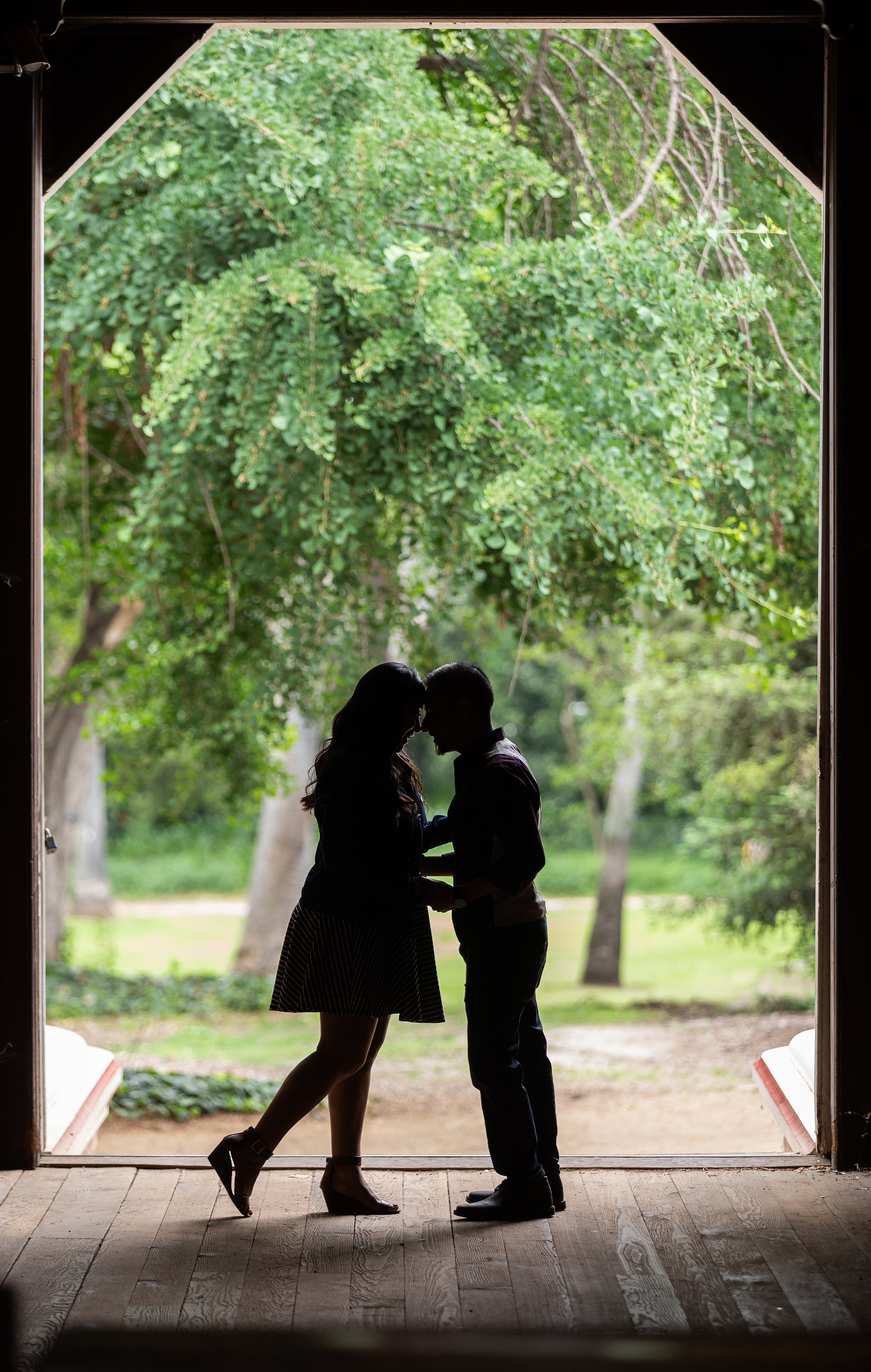 Silhouette of Engaged Couple.jpg