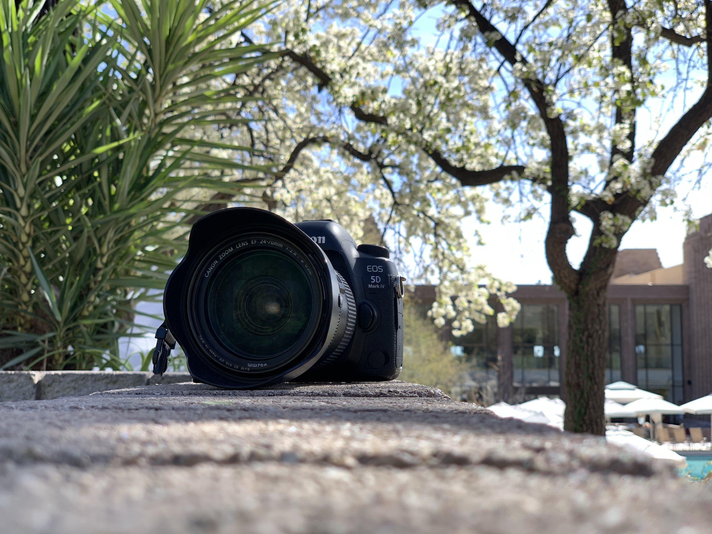 Photography Coordinator & Styling Internship.jpg
