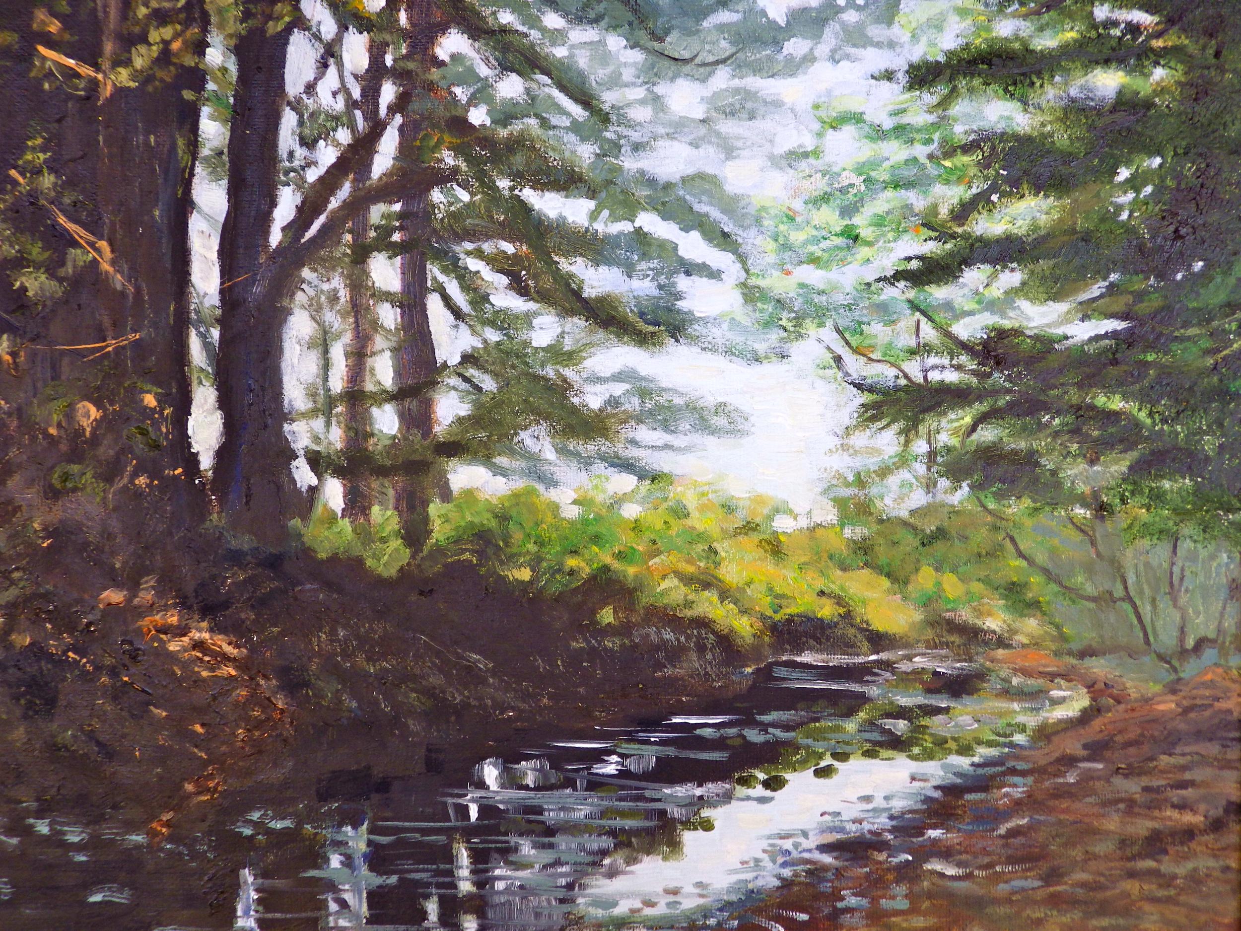 Redwood Creek