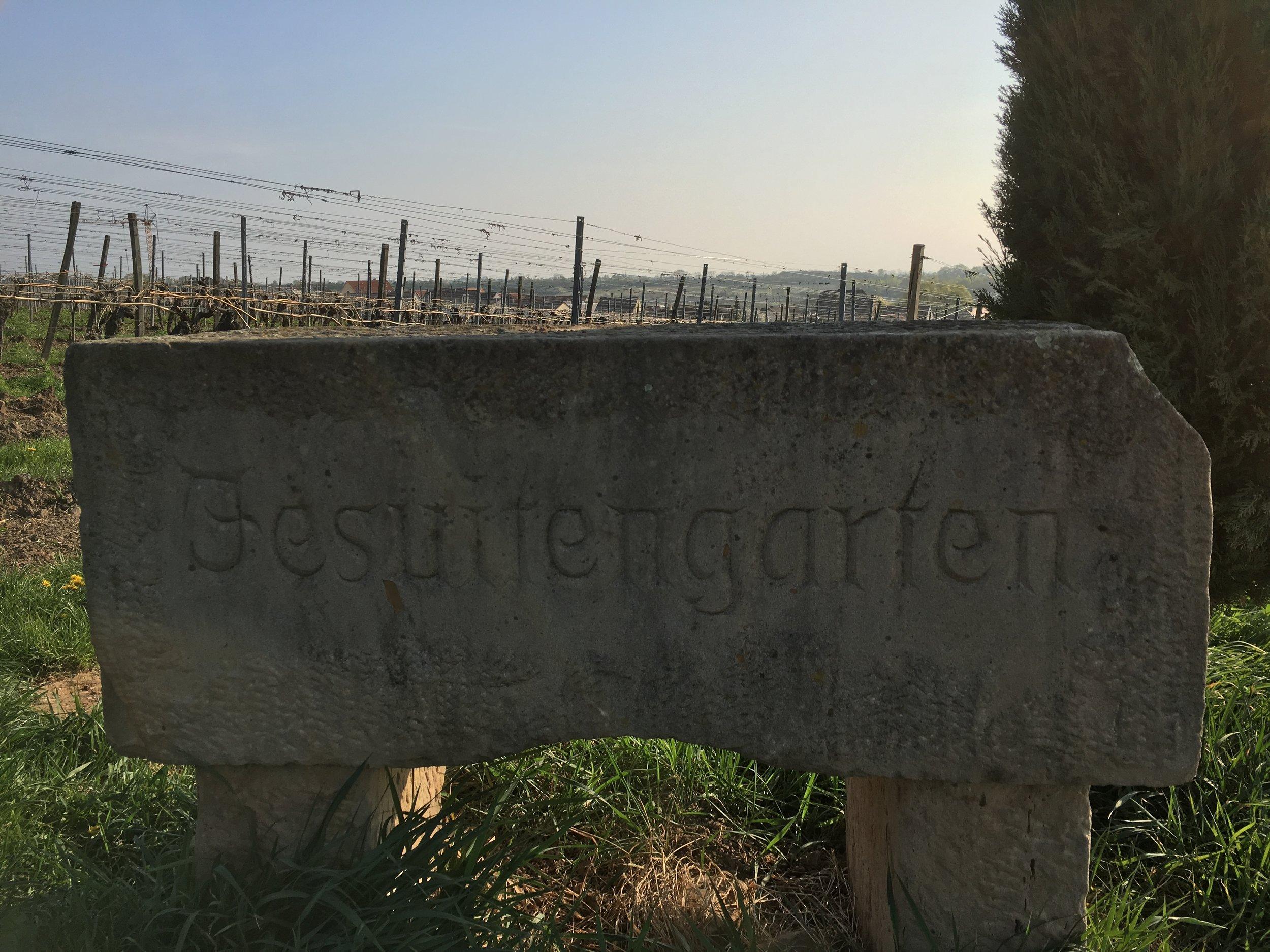 Pflaz-Jesuitgarten.JPG