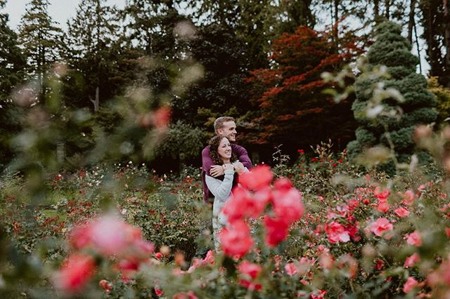 Kalie and Tom, nestled in the season's very last roses.