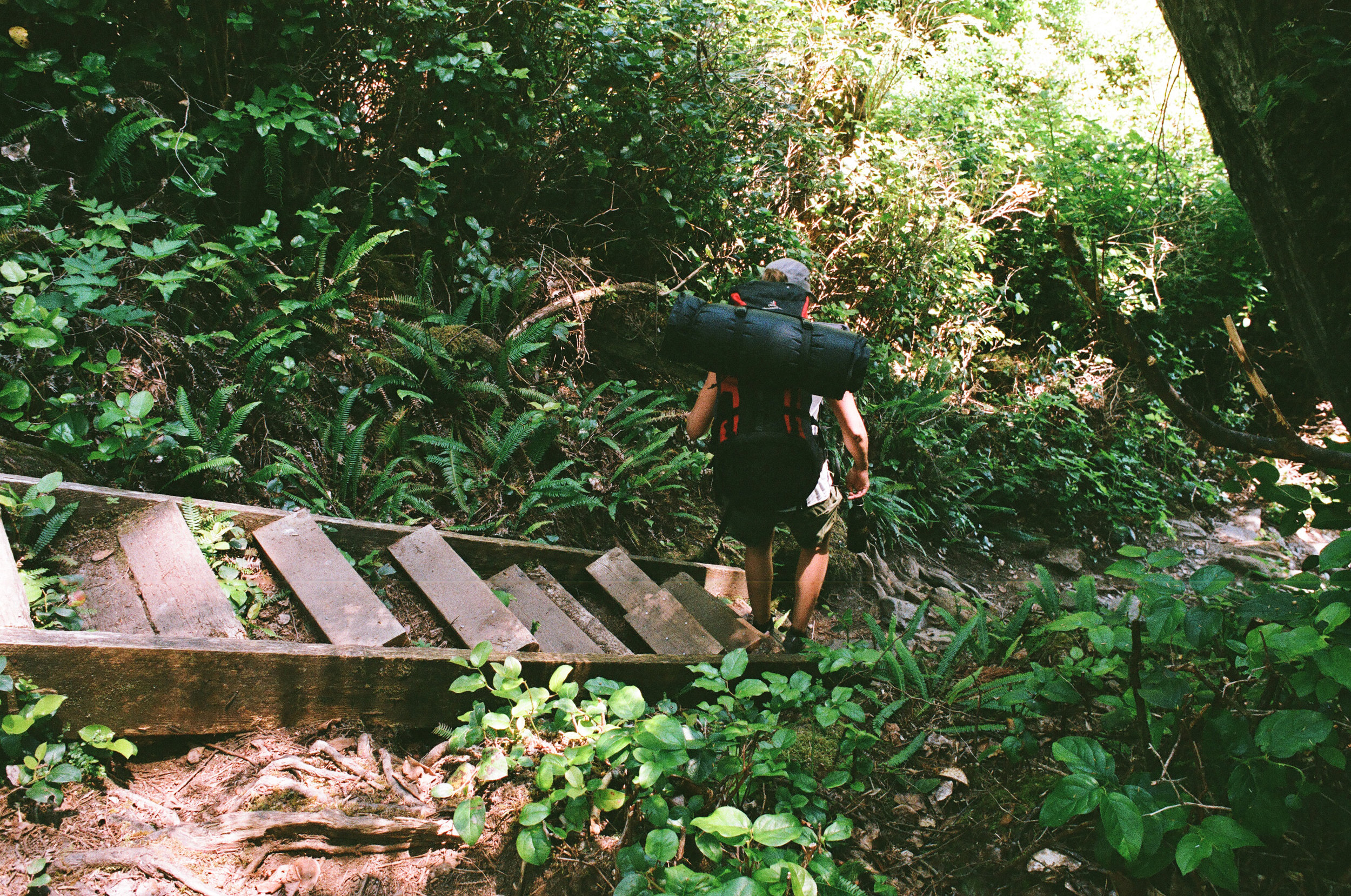 Payzant Creek -