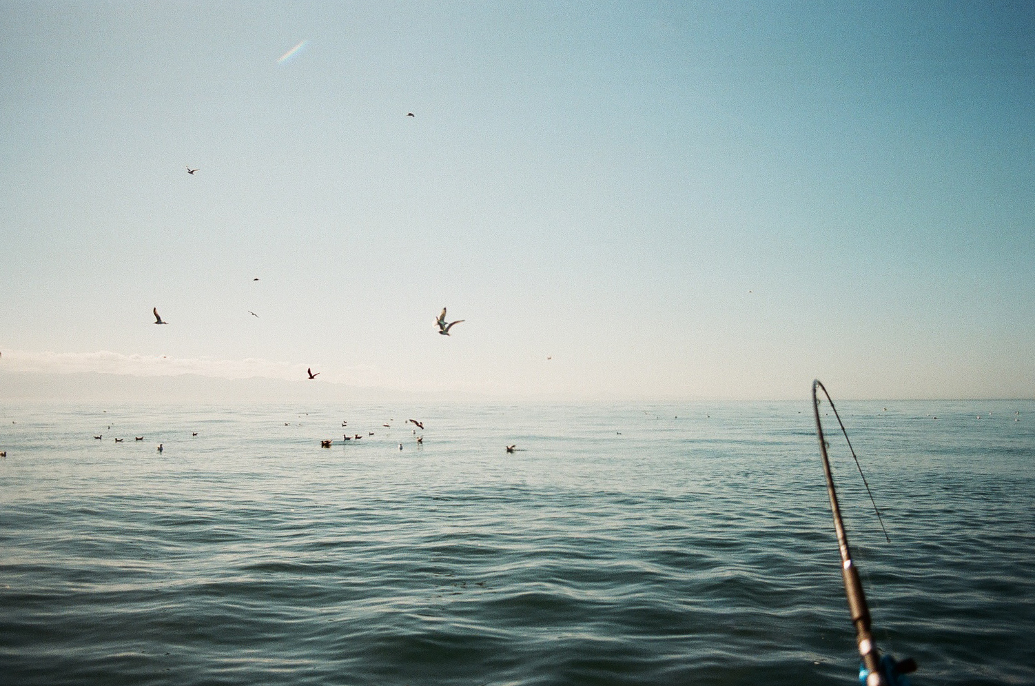East Sooke Fishing -