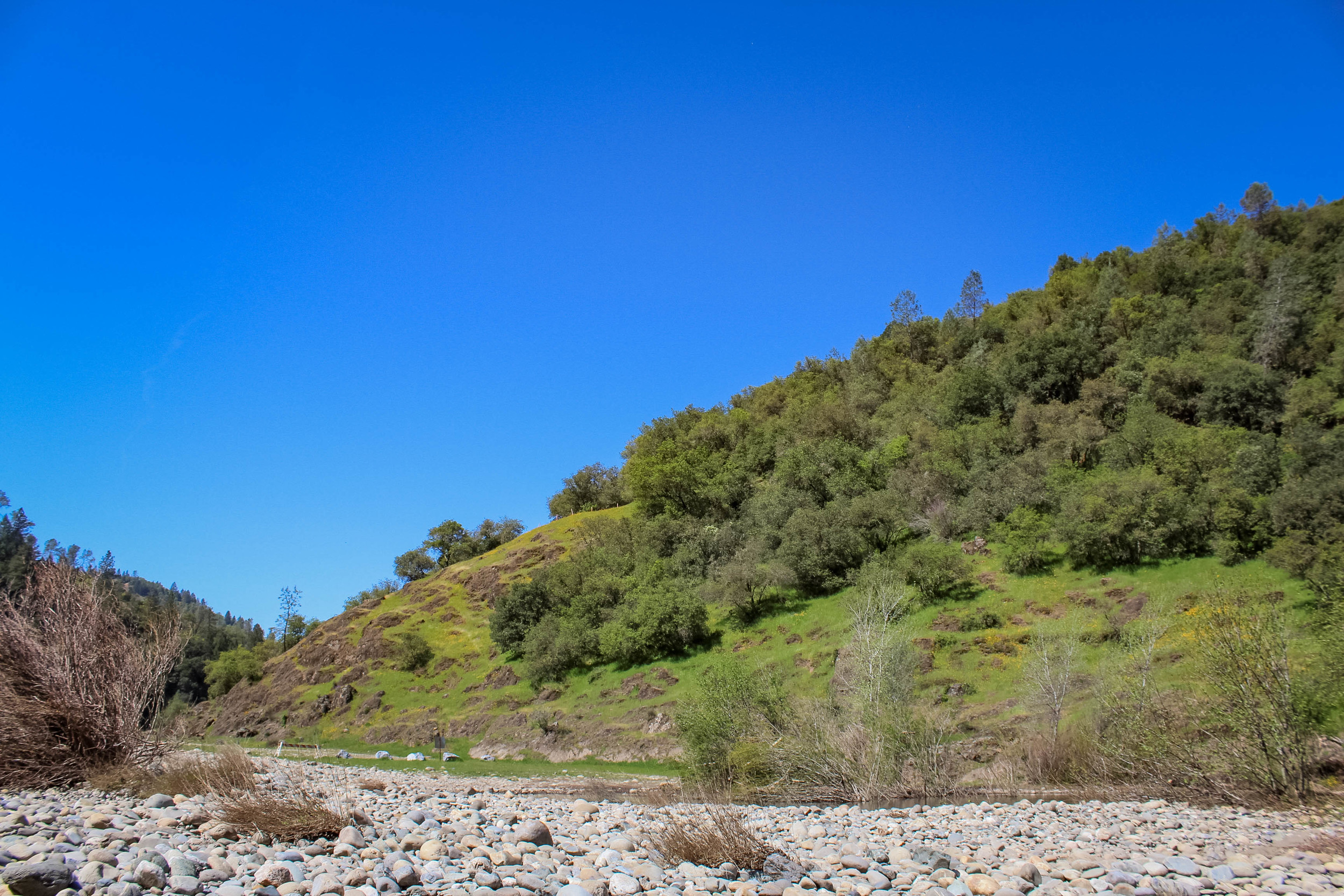 Landscape from the American River Confluence Trail in Auburn, CA. #visitauburnca