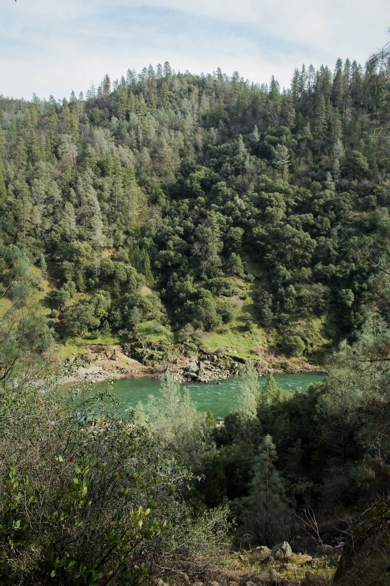 Sacramento area hikes: Auburn State Recreational Area Mountain Quarry Trail | tinted green