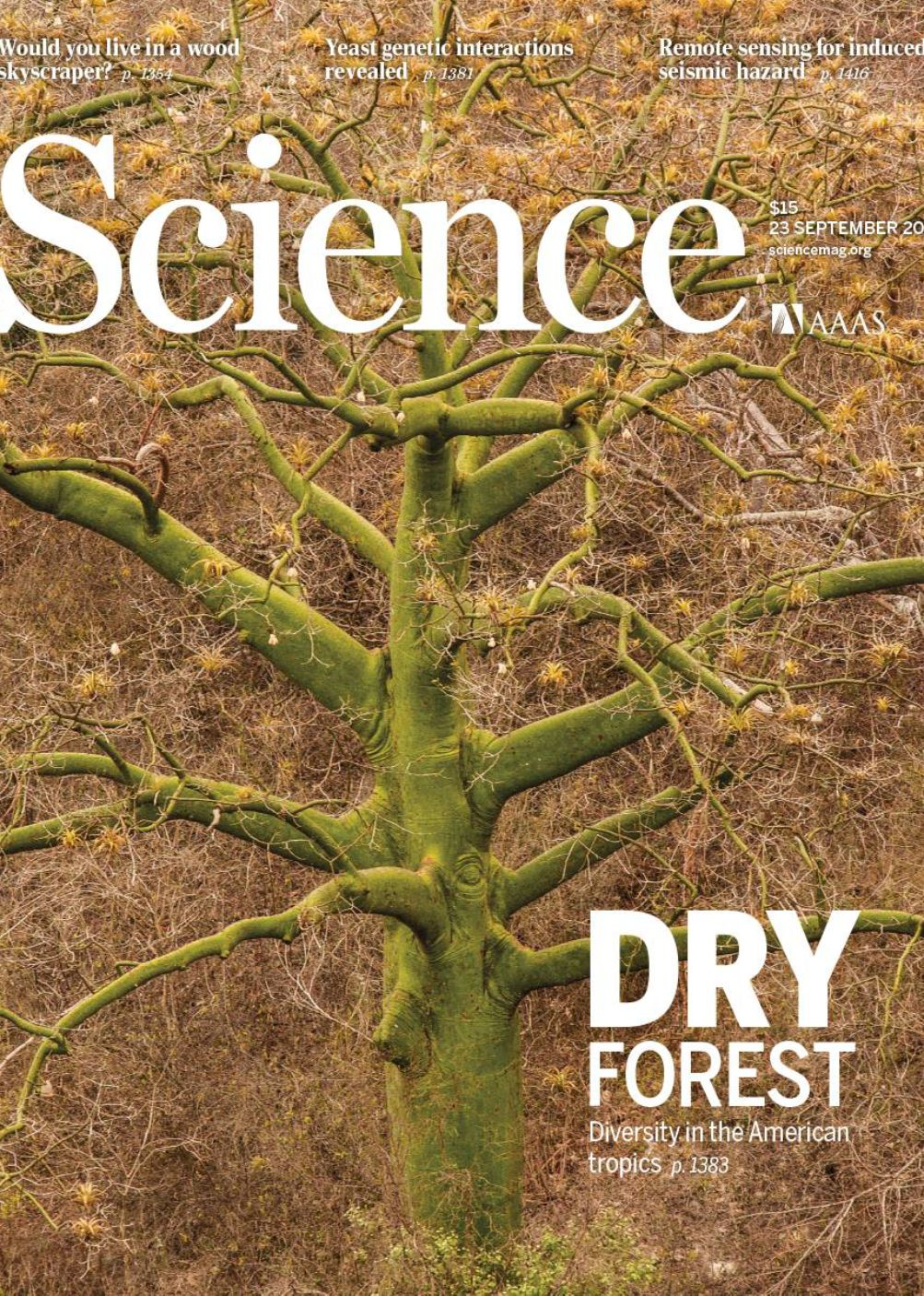 Tropical Dry Forest on the cover of Science, September 2016
