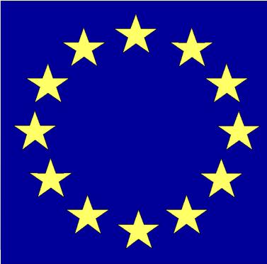 European Union: Strategic framework for category launch in the U.S