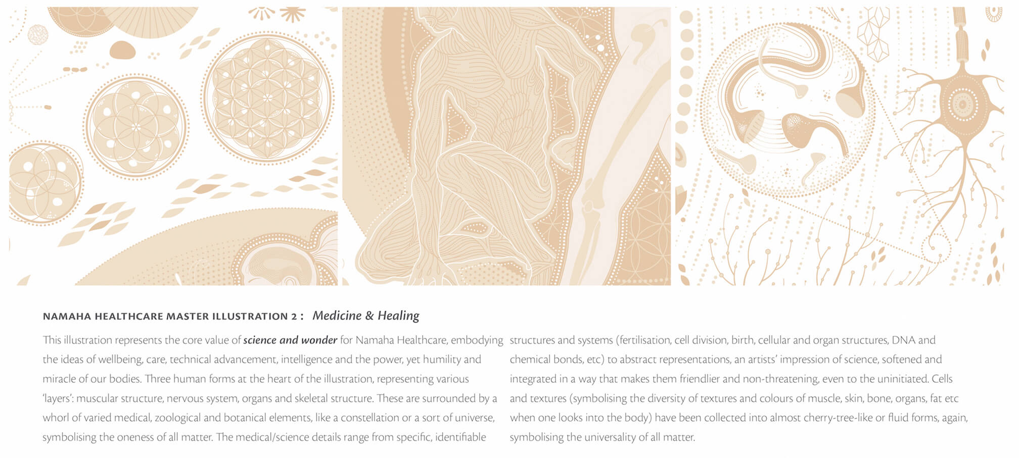 Namaha Illustrations 2b.jpg