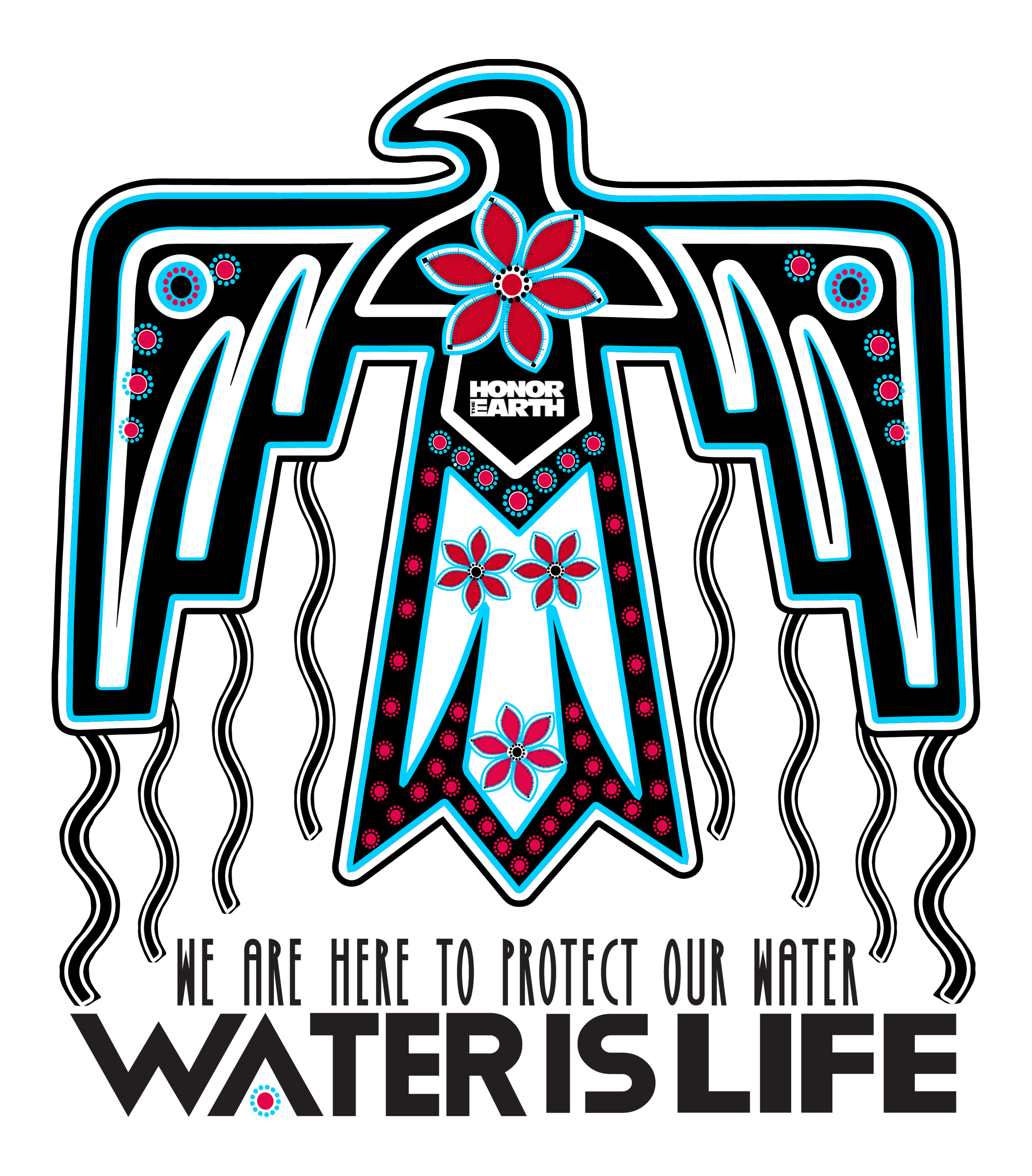 2019 Thunderbird (Water is Life)(Decal).png