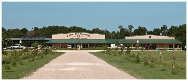 Click  to see White Oak Pastures solar thermal systems and learn more about this amazing farm.