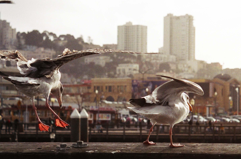 20130910-BdMV Beatriz de Miguel Vijandi - the bay-03-2.jpg