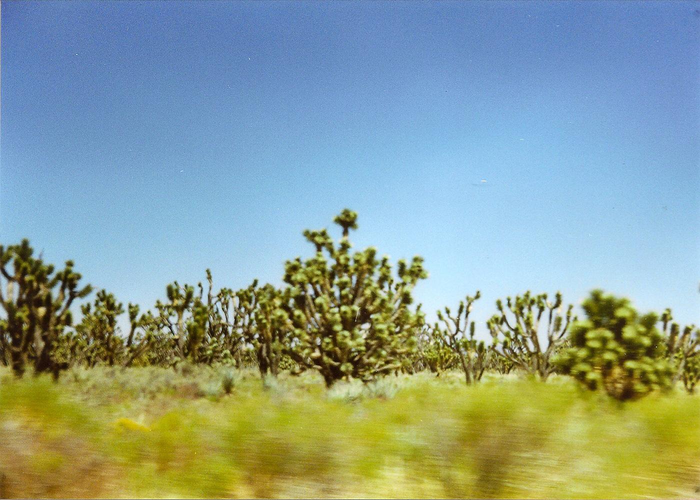 20050804-BdMV Beatriz de Miguel Vijandi - go west-09-2.jpg
