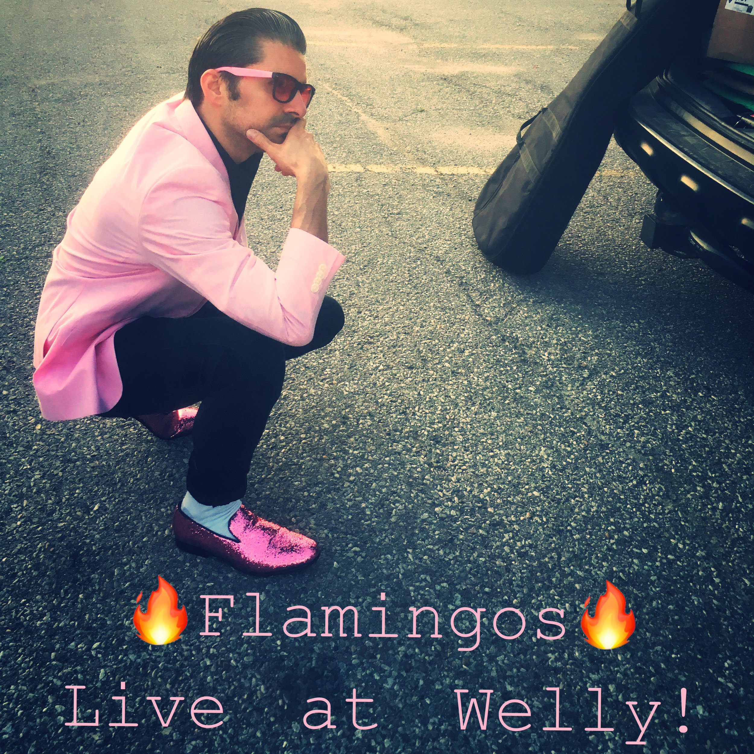 Flamingos - 9:30pm session 3   Pastel-pink, proper-prim, pearly, palliative, punctilious, planktivorous, proto-pompadoured, period-piece, pageantry-pop. Guelph's newest cover band will be playing 50's & 60's covers with a touch on today's hits, Dancing mandatory.